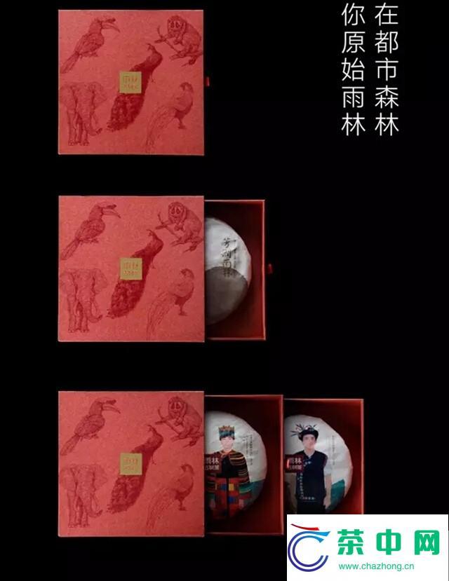 """【芳润雨林】——充满""""阳光""""的茶汤,才有润到喉咙里的甜!"""