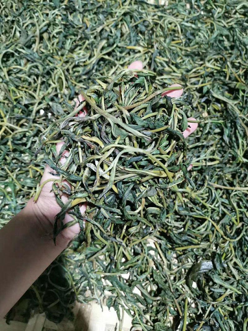 易比普洱茶价格,易武易比古树茶多少钱?